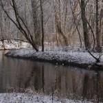 Wiązowna zimą