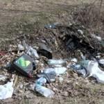 Śmieci w lasach