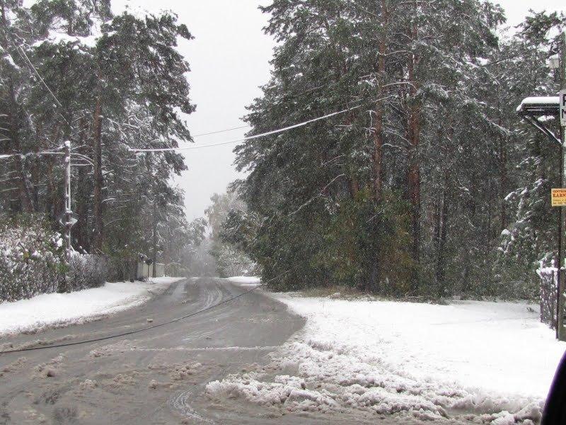 ul. Wiązowska, 14.10.2009 ok. 14-tej