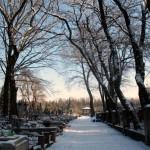 Cmentarz w Wiązownie