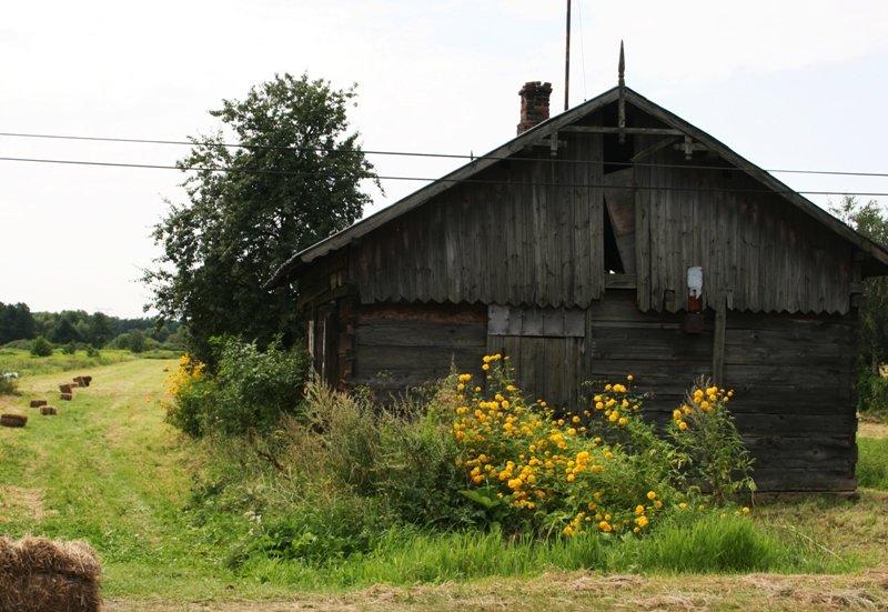Duchnów, 2009, foto: AS