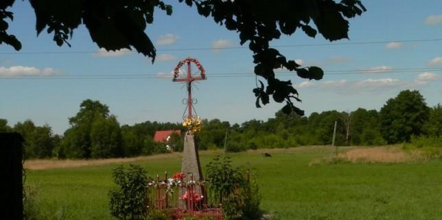 Kruszówiec, 2009