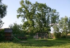 Dziechciniec, 2009, foto: AS