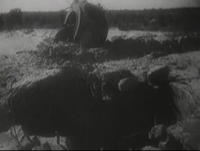 Odstrzelona kopuła pancerna 441P01 schronu Regelbau20a na Pohulance