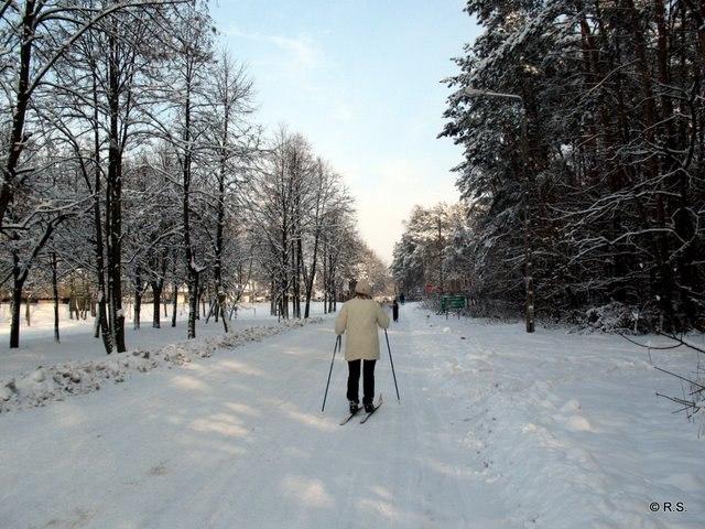 26.01.2012,  okolice Góry Sobotów, foto: RS