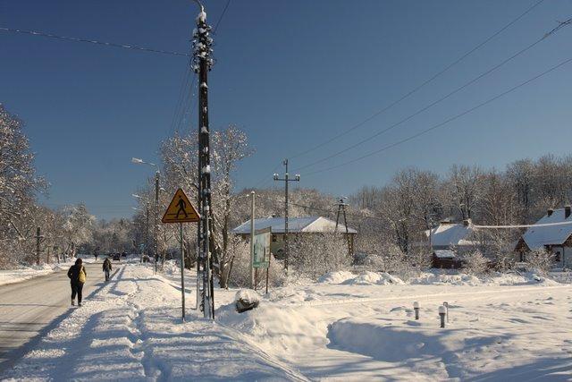 Zasypana Wiązowna, zima 2010