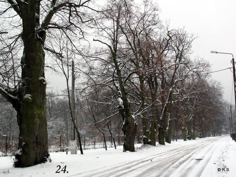 22.01.2012 064