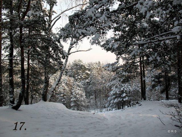 Spacer na Górę Sobotów